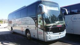 Beulas Aura Scania 55 1 1
